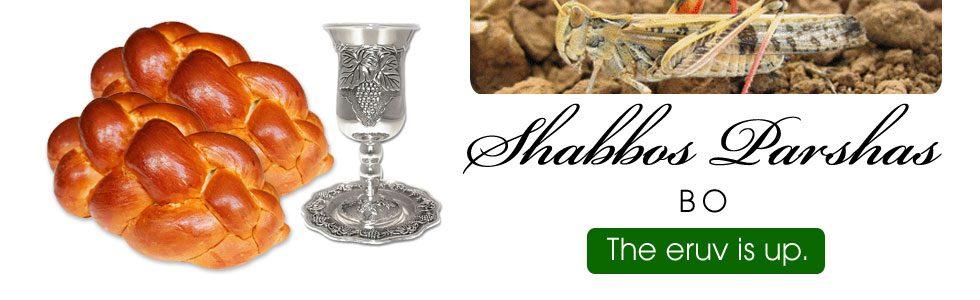 Shabbos Schedule Bo 5778
