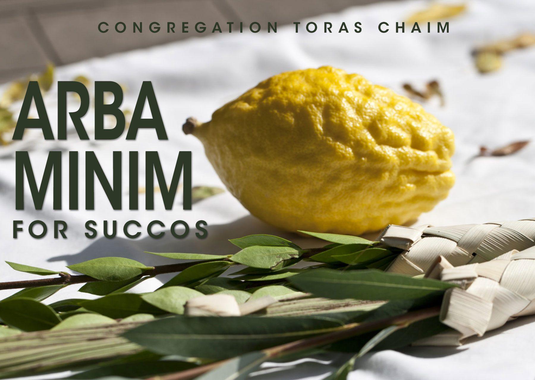 Arba Minim for Succos