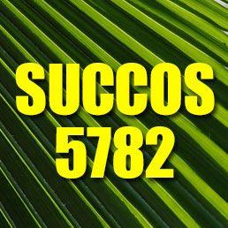 Succos Schedule 5782